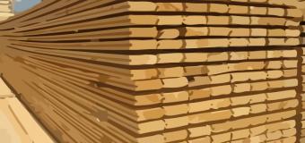 Valsts darba inspekcija uzsāk tematiskās pārbaudes kokapstrādes un mežizstrādes uzņēmumos